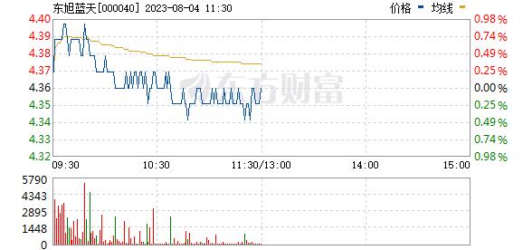 东旭蓝天(000040)