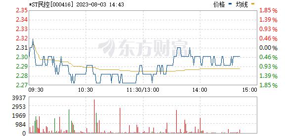 民生控股(000416)