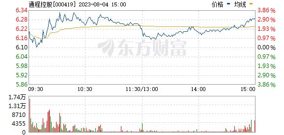 通程控股(000419)