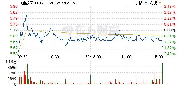 中迪投资(000609)