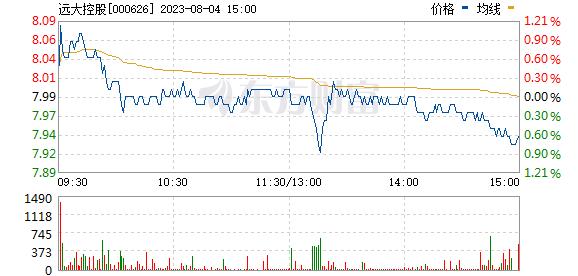 远大控股(000626)
