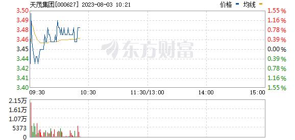 天茂集团(000627)
