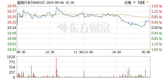 岳阳兴长(000819)