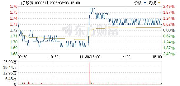 银亿股份(000981)