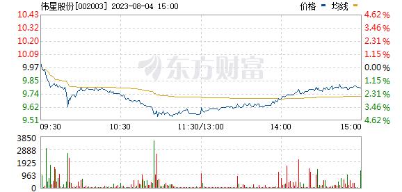 伟星股份(002003)