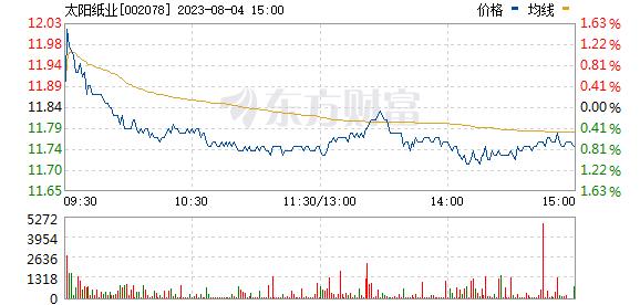 太阳纸业(002078)