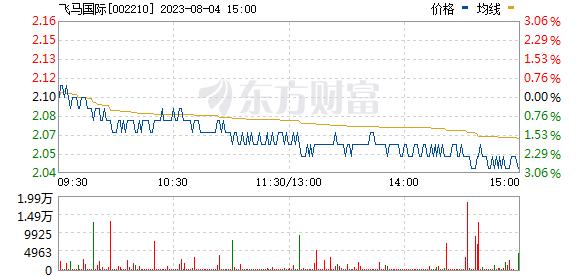 飞马国际(002210)