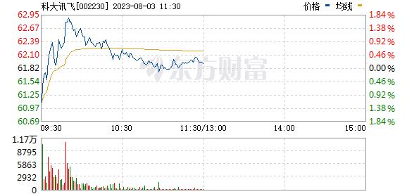 科大讯飞(002230)
