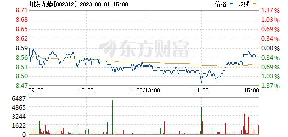 三泰控股(002312)