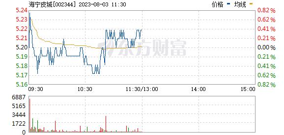 海宁皮城(002344)