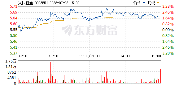 兴民智通(002355)