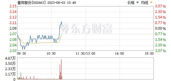 普邦股份(002663)