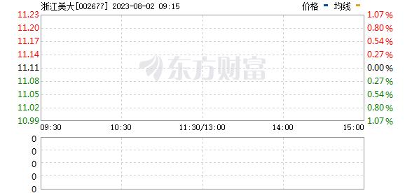 浙江美大(002677)