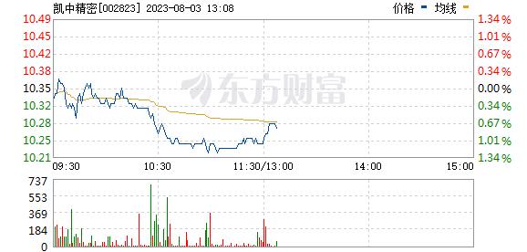 凯中精密(002823)