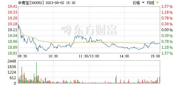 中青宝(300052)