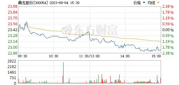 鼎龙股份(300054)