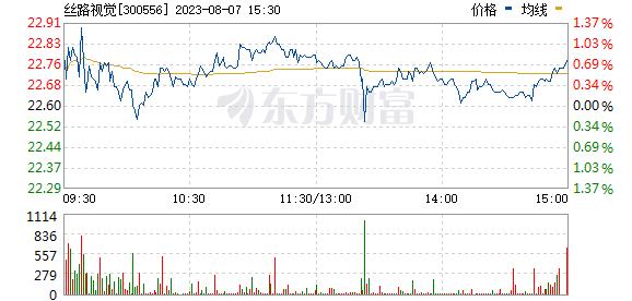 丝路视觉(300556)