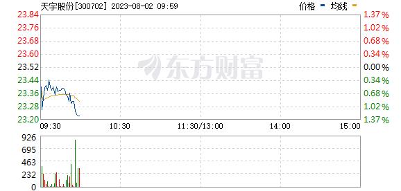 天宇股份(300702)