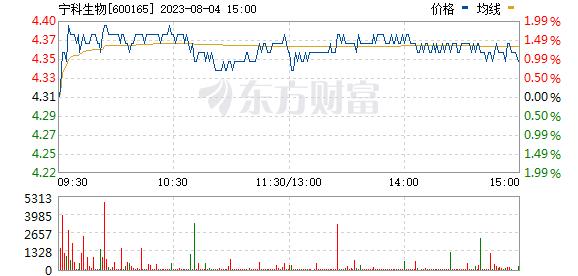 新日恒力(600165)