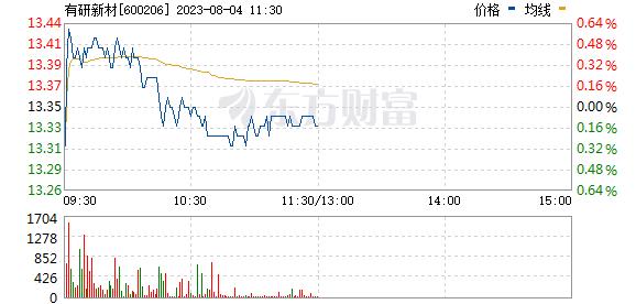 有研新材(600206)