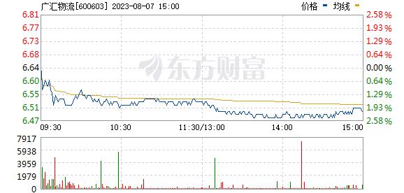 广汇物流(600603)