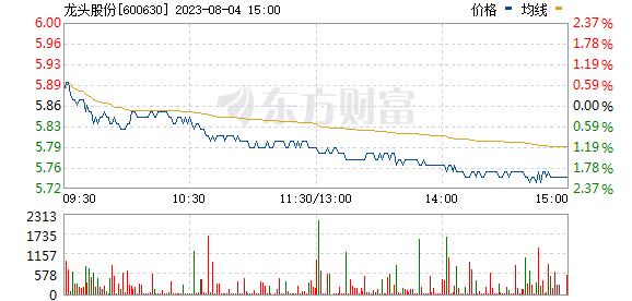 龙头股份(600630)
