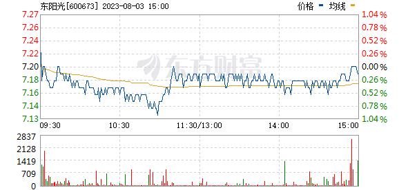 东阳光科(600673)