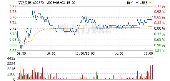 综艺股份(600770)