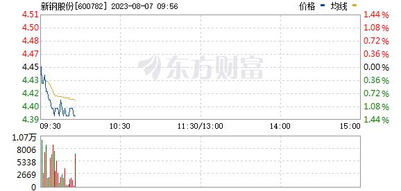 新钢股份(600782)