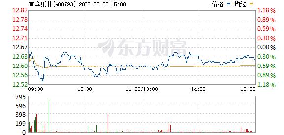 宜宾纸业(600793)