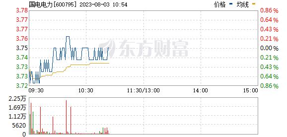 国电电力(600795)