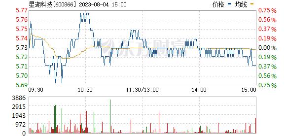 星湖科技(600866)