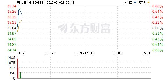 宏发股份(600885)