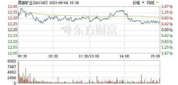 西部矿业(601168)