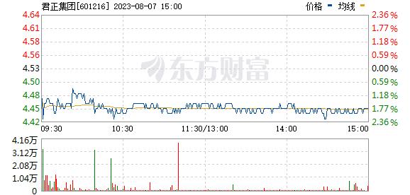 君正集团(601216)