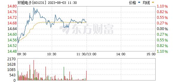 环旭电子(601231)