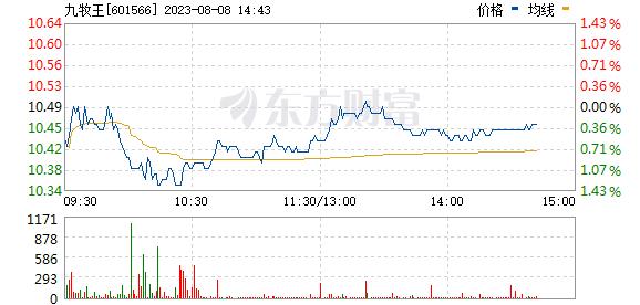 九牧王(601566)