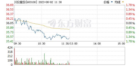 XD川仪股(603100)
