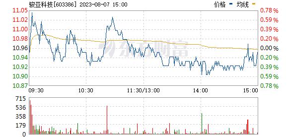 广东骏亚(603386)