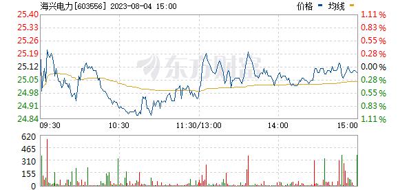 海兴电力(603556)