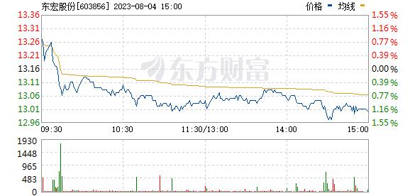 东宏股份(603856)