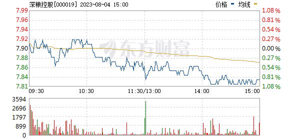 深粮控股(000019)