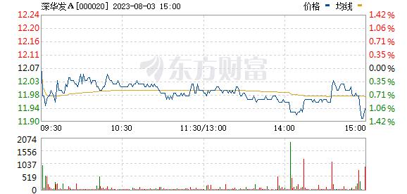 深华发A(000020)