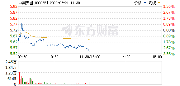 中国天楹(000035)