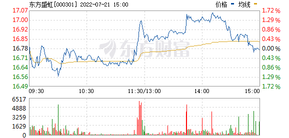 东方盛虹(000301)