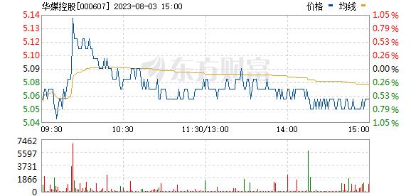 华媒控股(000607)