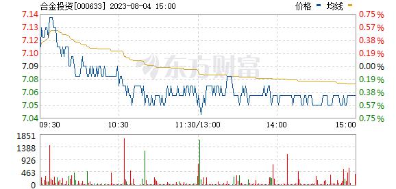 合金投资(000633)