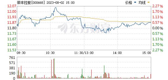荣丰控股(000668)