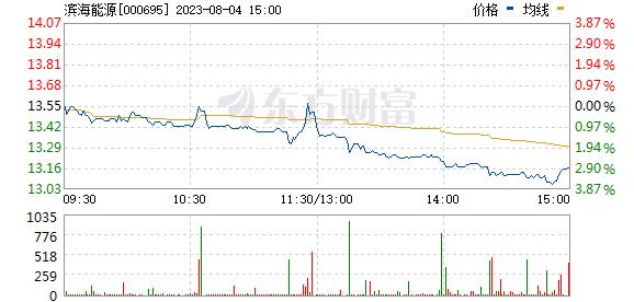 滨海能源(000695)