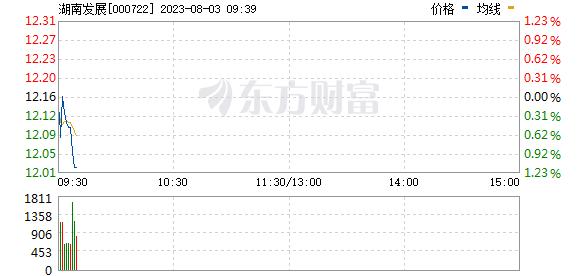 湖南发展(000722)